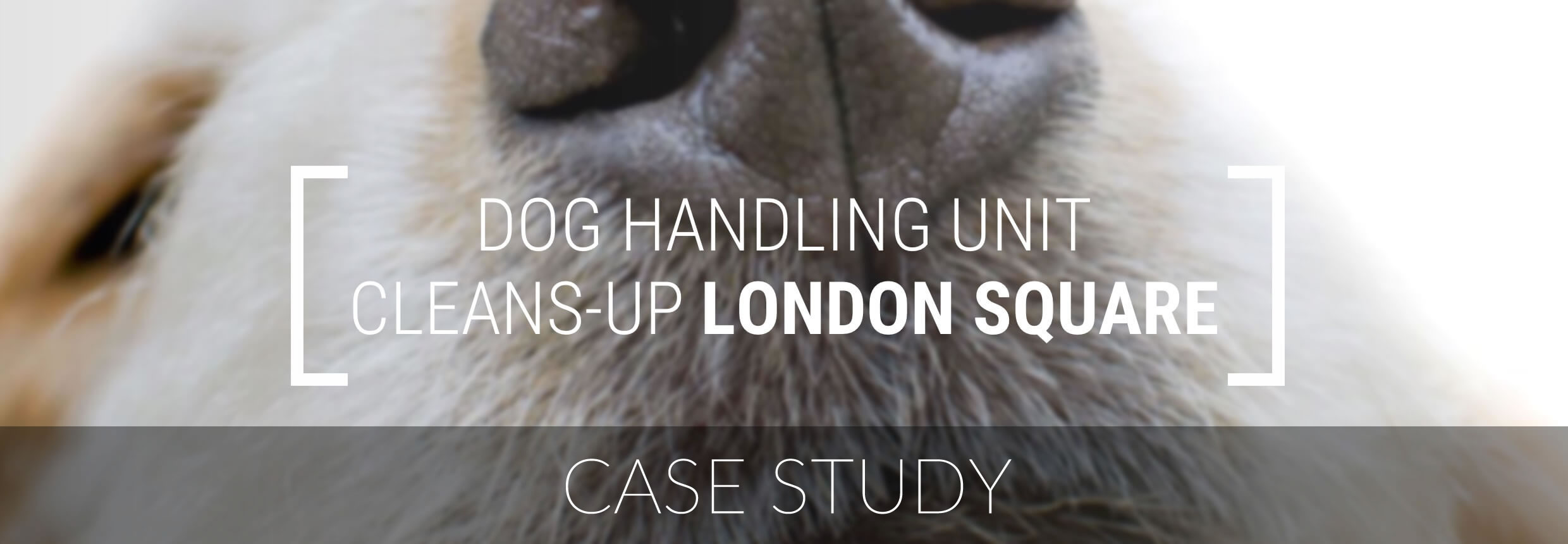 Clearway Case Study - Security Guard Dog Unit
